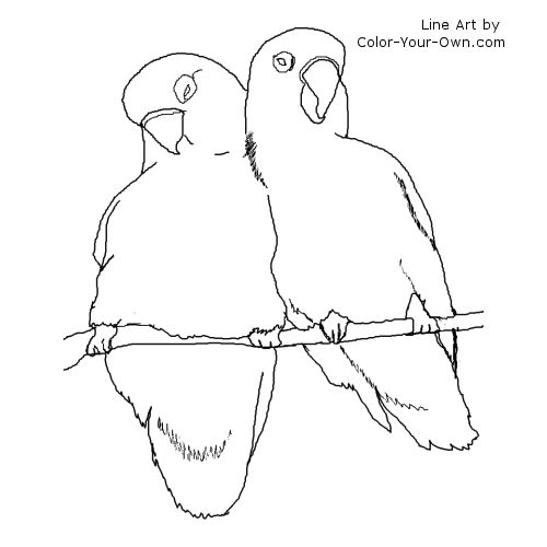 love birds coloring pages cuddly love birds coloring pages surfnetkids pages birds love coloring