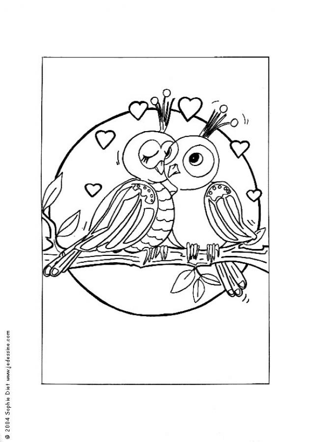 love birds coloring pages springtime coloring sheets spring love birds birds pages coloring love