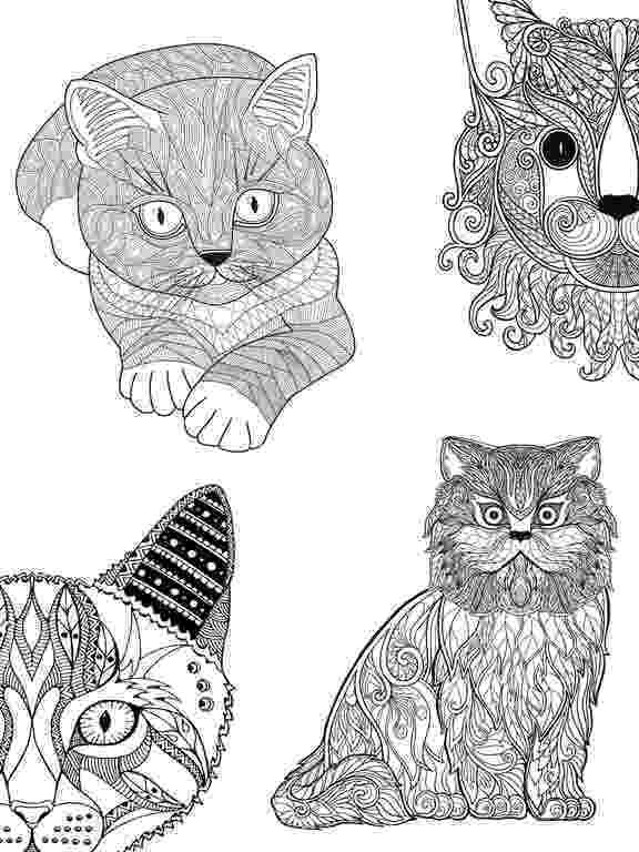 mandalas coloring book ipad mandalas mandala coloring and coloring on pinterest mandalas book coloring ipad