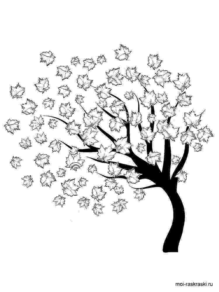 maple tree coloring page maple tree coloring pages coloring pages page tree coloring maple
