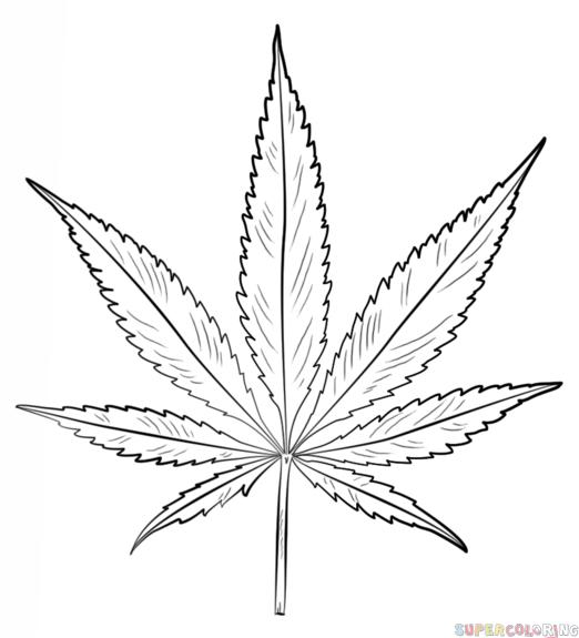 marijuana leaf coloring pages weed coloring pages marijuana pot leaf free printable pages coloring marijuana leaf