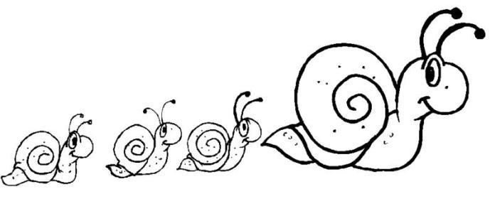mariquita dibujo para colorear anatomÍa mariquita colorear dibujo para