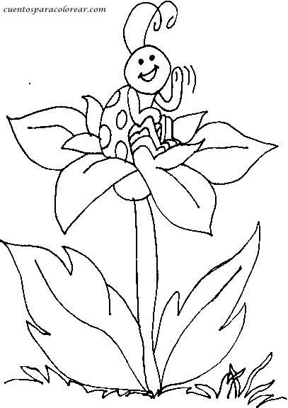 mariquita dibujo para colorear cómo dibujar una mariquita paso a paso dibujartcom dibujo mariquita para colorear