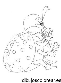 mariquita dibujo para colorear dibujo de una divertida abeja dibujo colorear mariquita para