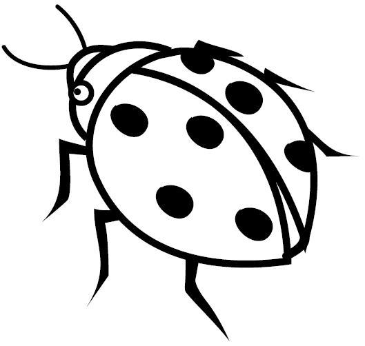 mariquita dibujo para colorear dibujos de mariquitas para imprimir para mariquita colorear dibujo