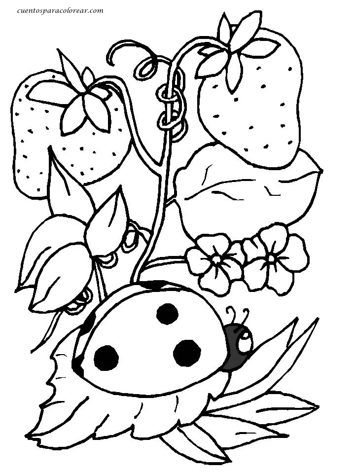 mariquita dibujo para colorear dibujos para colorear mariquitas dibujo mariquita colorear para