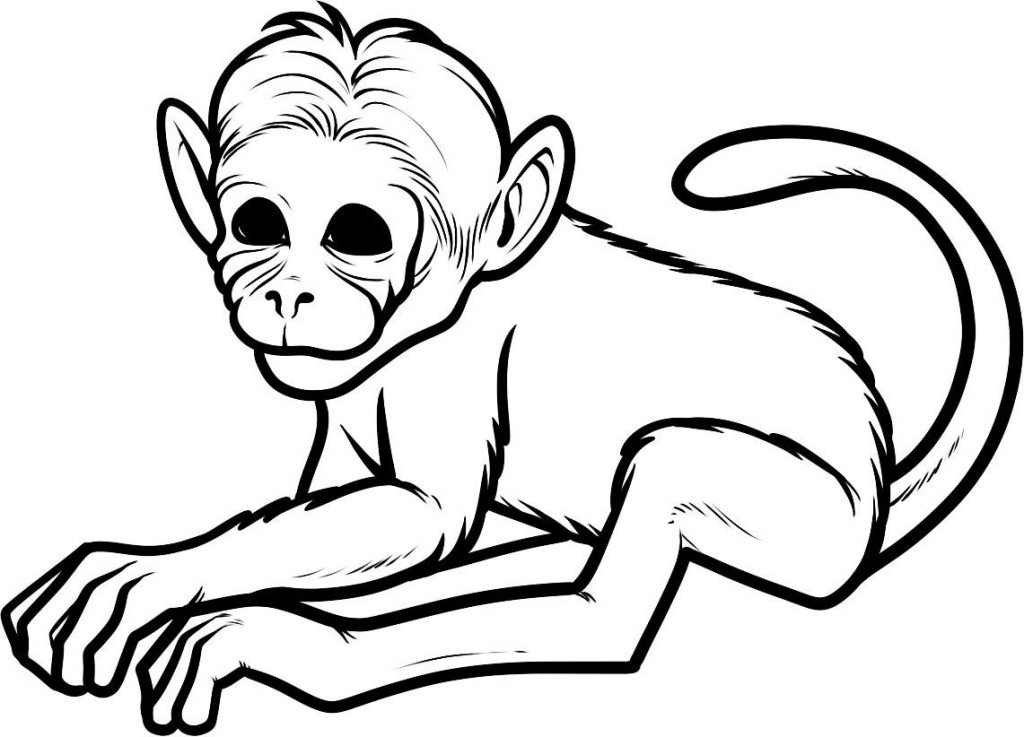 monkey coloring monkey coloring pages getcoloringpagescom monkey coloring