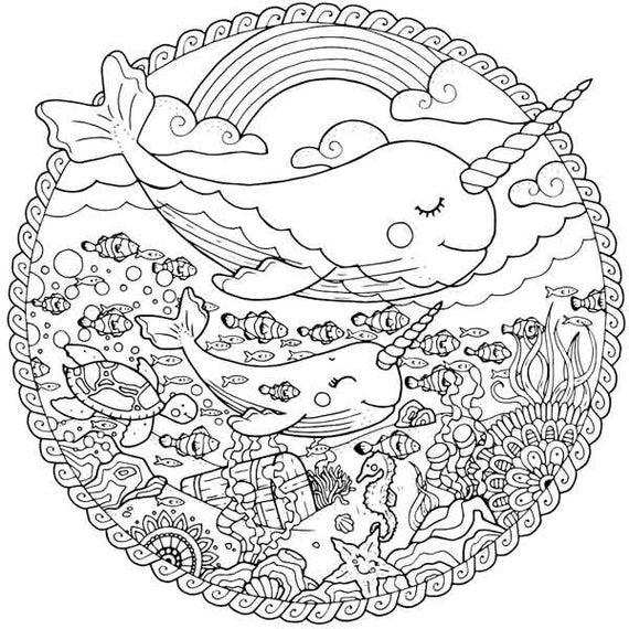 narwhal coloring page narwhal coloring page for adults sea life adult coloring narwhal page coloring