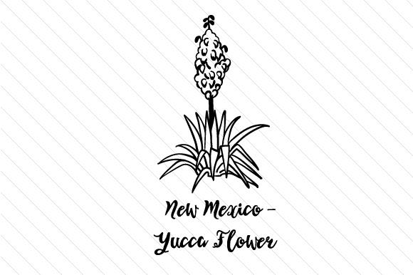 new mexico state flower new mexico state flower photos state flower new mexico