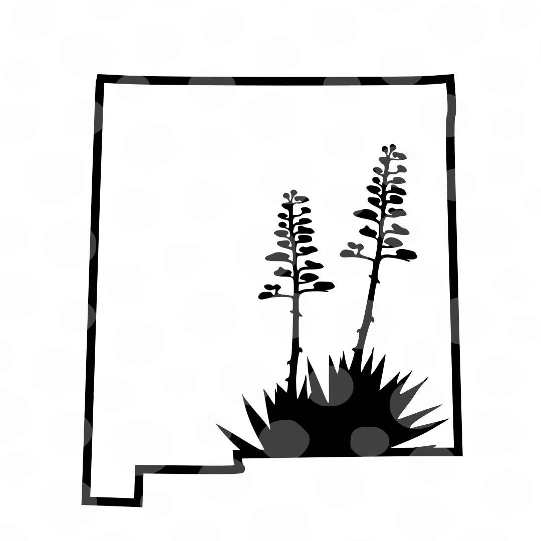 new mexico state flower wyoming state flower coloring page free printable state new flower mexico