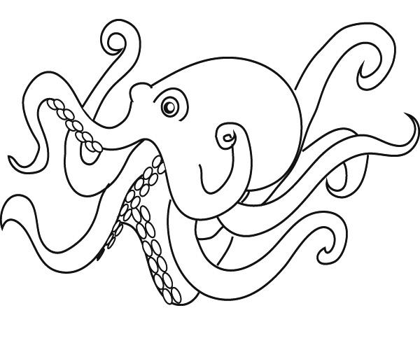 octopus color page cartoon octopus coloring page free printable coloring pages octopus color page