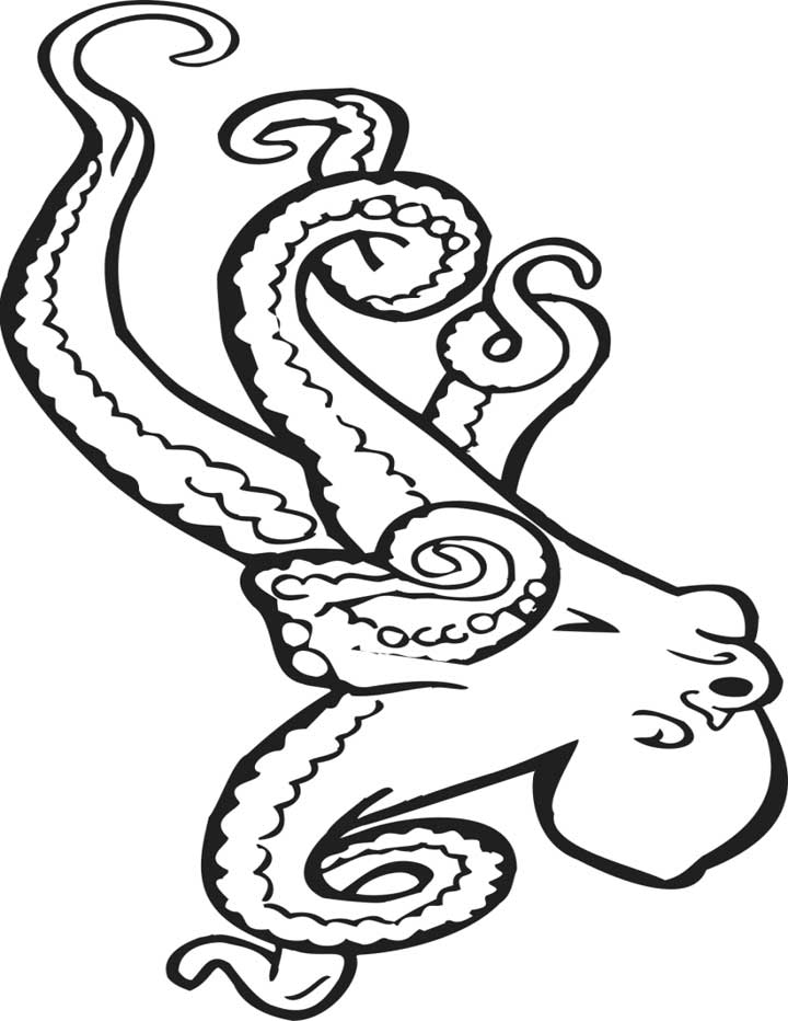 octopus color page octopus coloring pages octopus page color