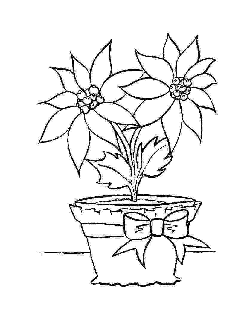 online coloring for toddlers free printable poinsettia coloring pages for kids online coloring for toddlers