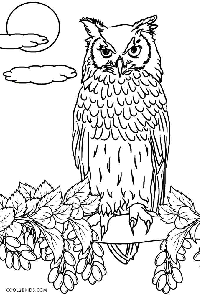owl coloring page baby owl coloring pages getcoloringpagescom coloring owl page