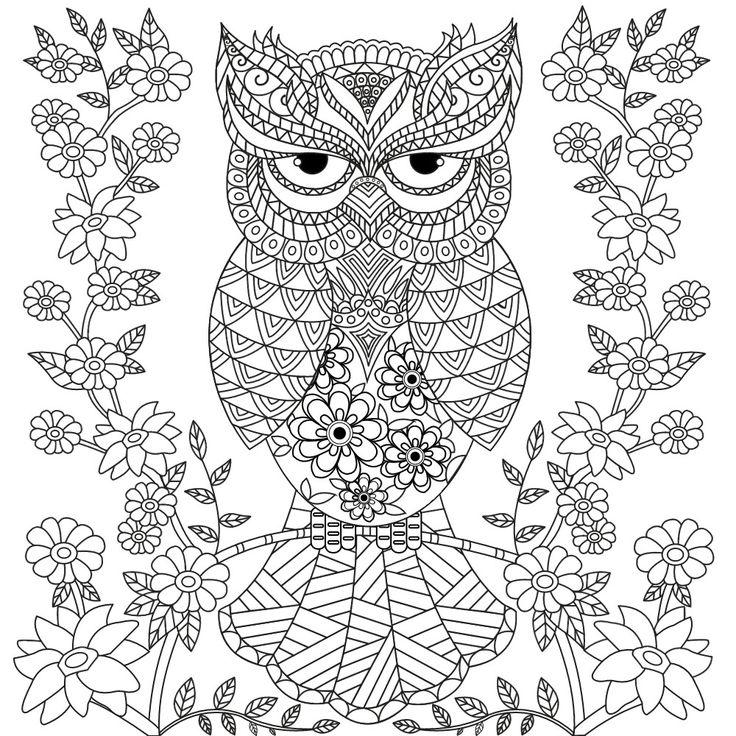 owl coloring page desenho de coruja fofa para colorir desenhos para owl page coloring
