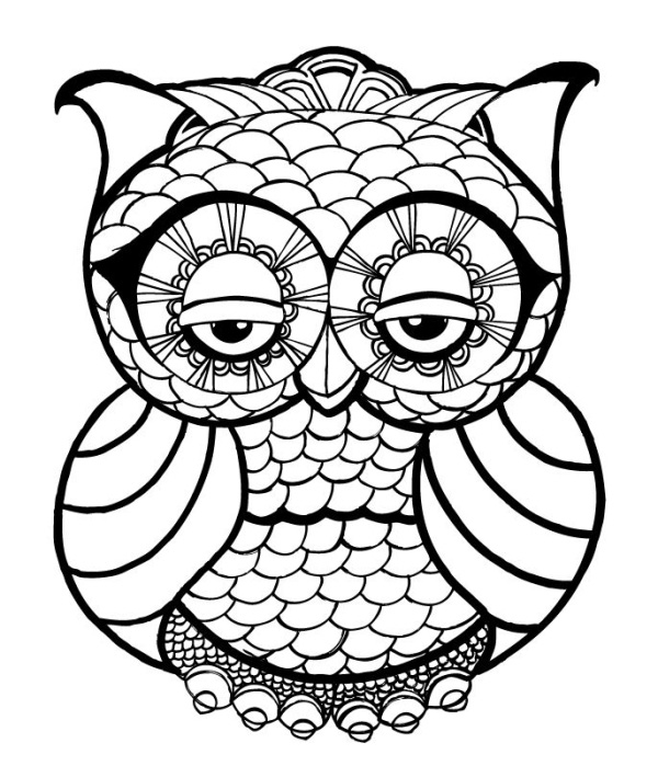 owl coloring page free printable owl coloring pages for kids cool2bkids owl page coloring