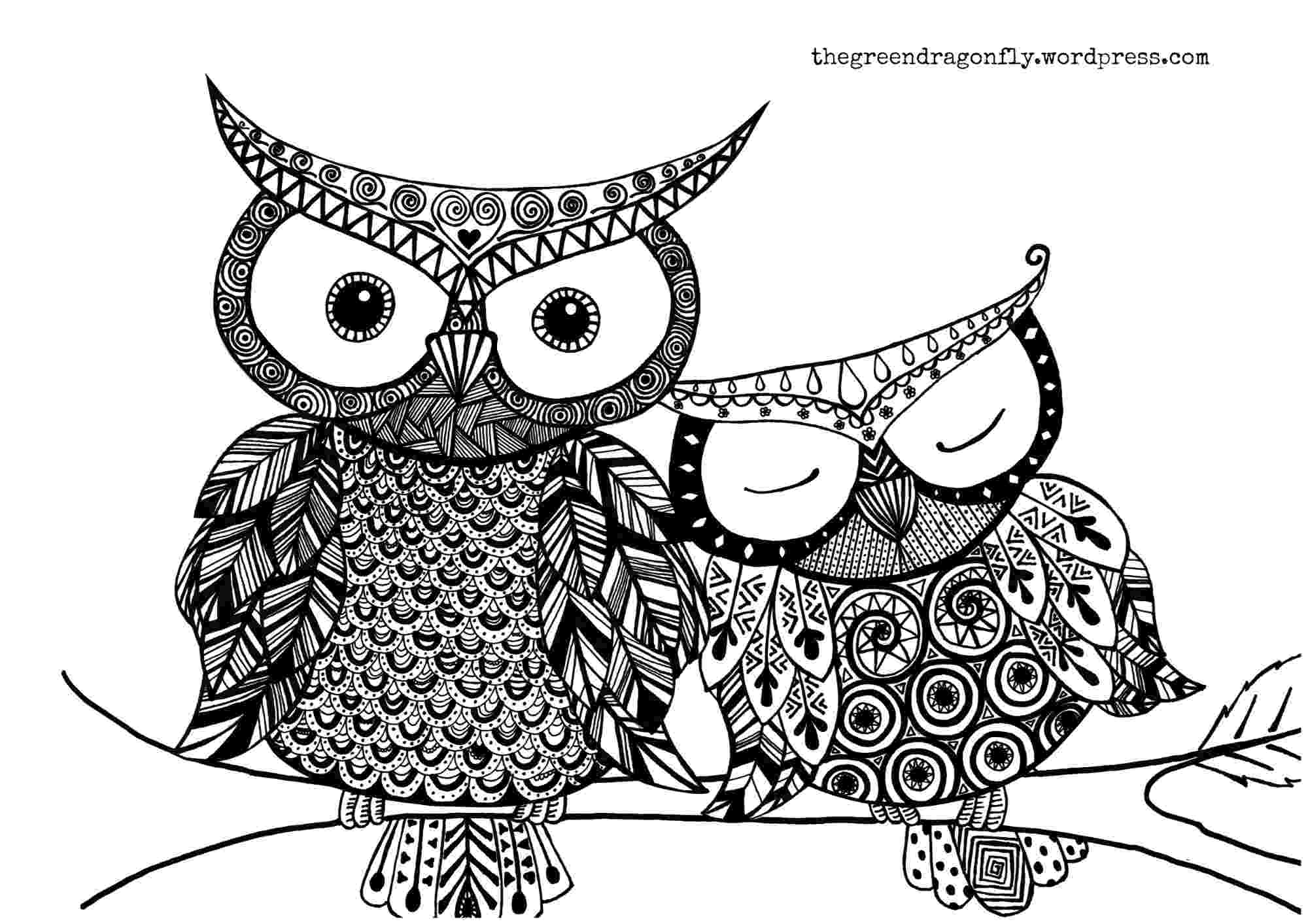 owl pictures to print and color coloring sheet the green dragonfly to owl and color print pictures