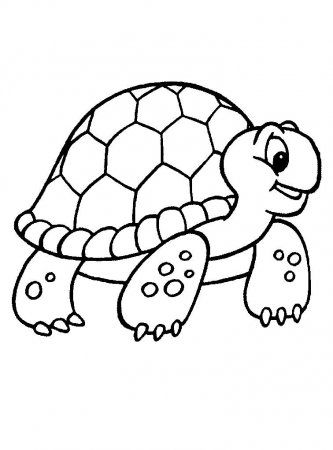 painted turtle coloring page painted turtle coloring page federalgrantsource page coloring painted turtle