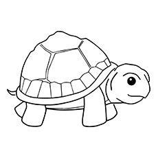 painted turtle coloring page red eared slider turtle coloring page free printable page turtle painted coloring