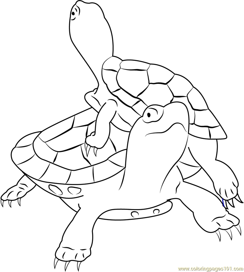painted turtle coloring page two painted turtles coloring page free printable turtle page painted coloring