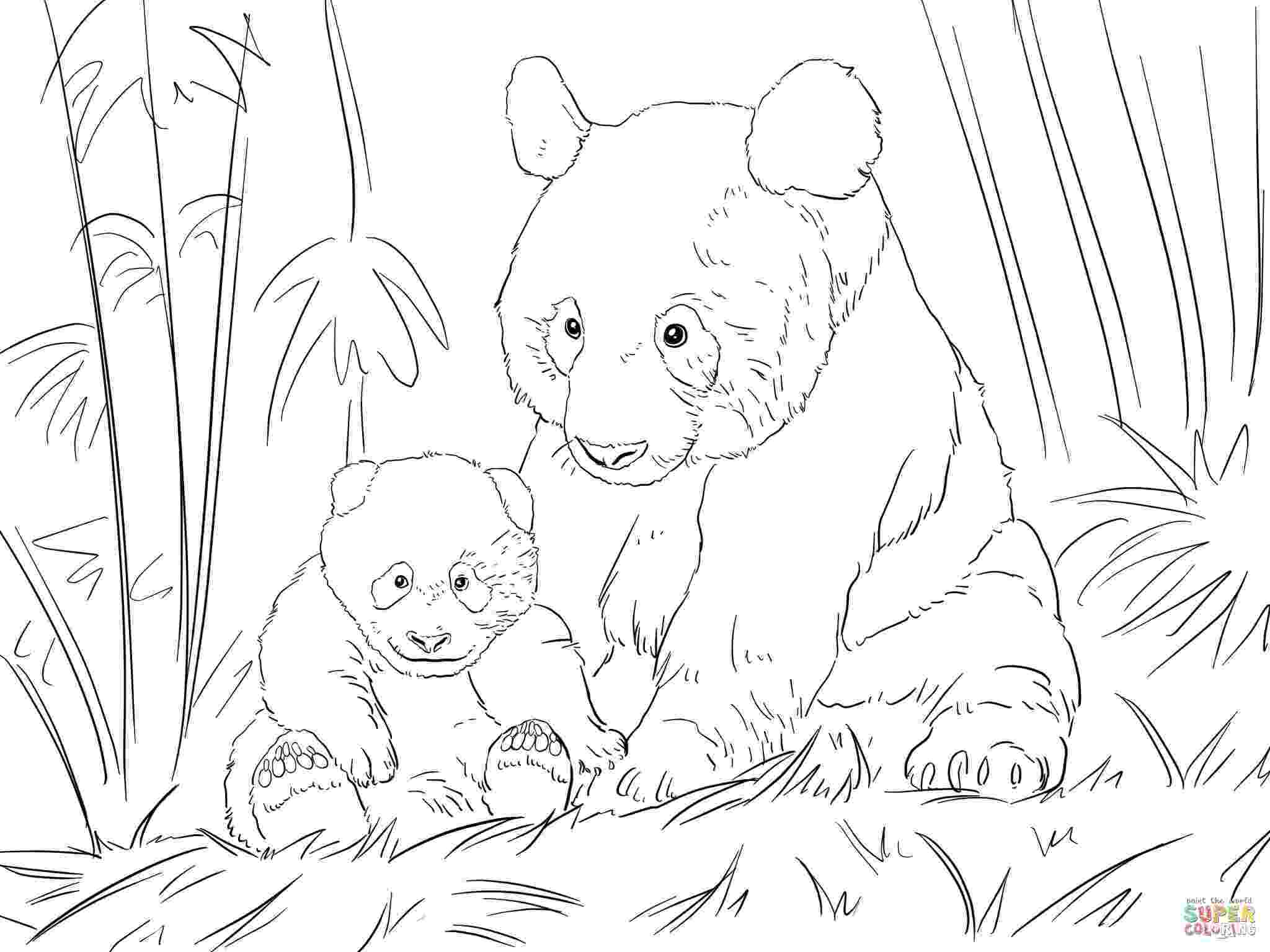 panda bear coloring pictures 18 best mom and baby animal coloring pages images on pinterest bear pictures panda coloring