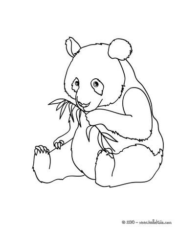 panda coloring page giant panda coloring pages hellokidscom coloring page panda