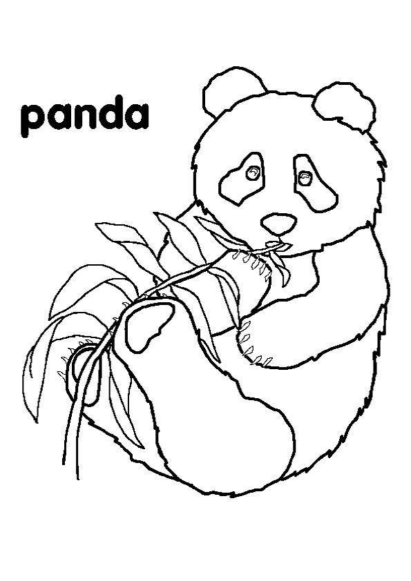 panda pictures that you can print free printable reading bookmarks black and white panda that pictures can print you