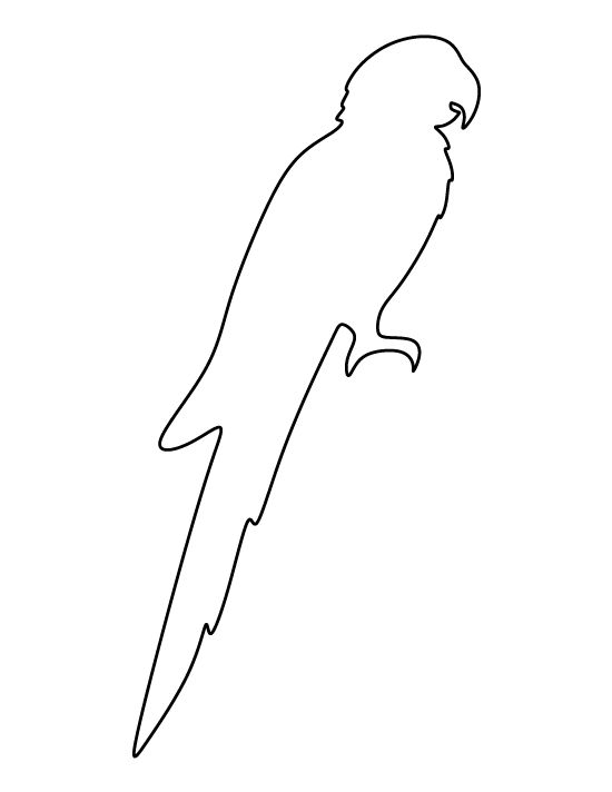 parrot print out pin by muse printables on printable patterns at print out parrot