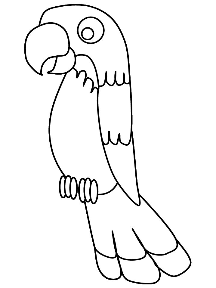 parrot print out pin by muse printables on printable patterns at print parrot out
