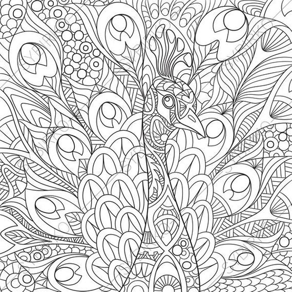 peacock coloring book peacock coloring page free printable coloring pages book coloring peacock