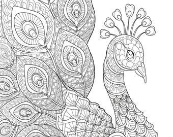 peacock coloring peacock coloring etsy coloring peacock