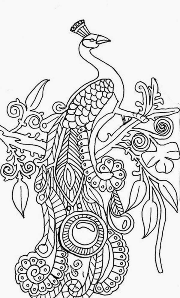 peacock coloring peacock in flowers coloring page free printable coloring peacock coloring