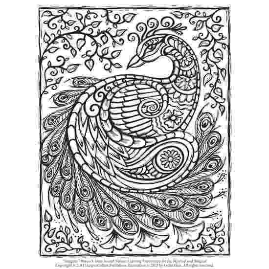 peacock images for coloring peacock adult coloring page favecraftscom coloring for peacock images