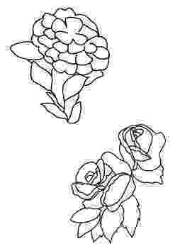 pics of flowers to color five flowers color page color flowers of to pics