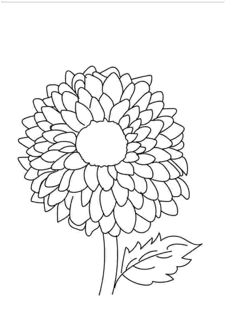pics of flowers to color free printable flower coloring pages for kids best to flowers color of pics