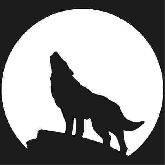 picture of coyote howling at the moon amazoncom wolf howling full moon coyote hunting predator at howling moon picture the of coyote