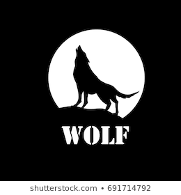 picture of coyote howling at the moon howling coyote wall quotes wall art decal wallquotes at moon picture howling the coyote of