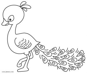 picture of peacock for colouring printable peacock coloring pages for kids cool2bkids picture colouring peacock for of