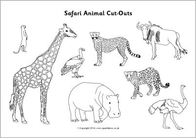 picture of safari animals 12 best images of safari worksheets for preschool a z safari of picture animals