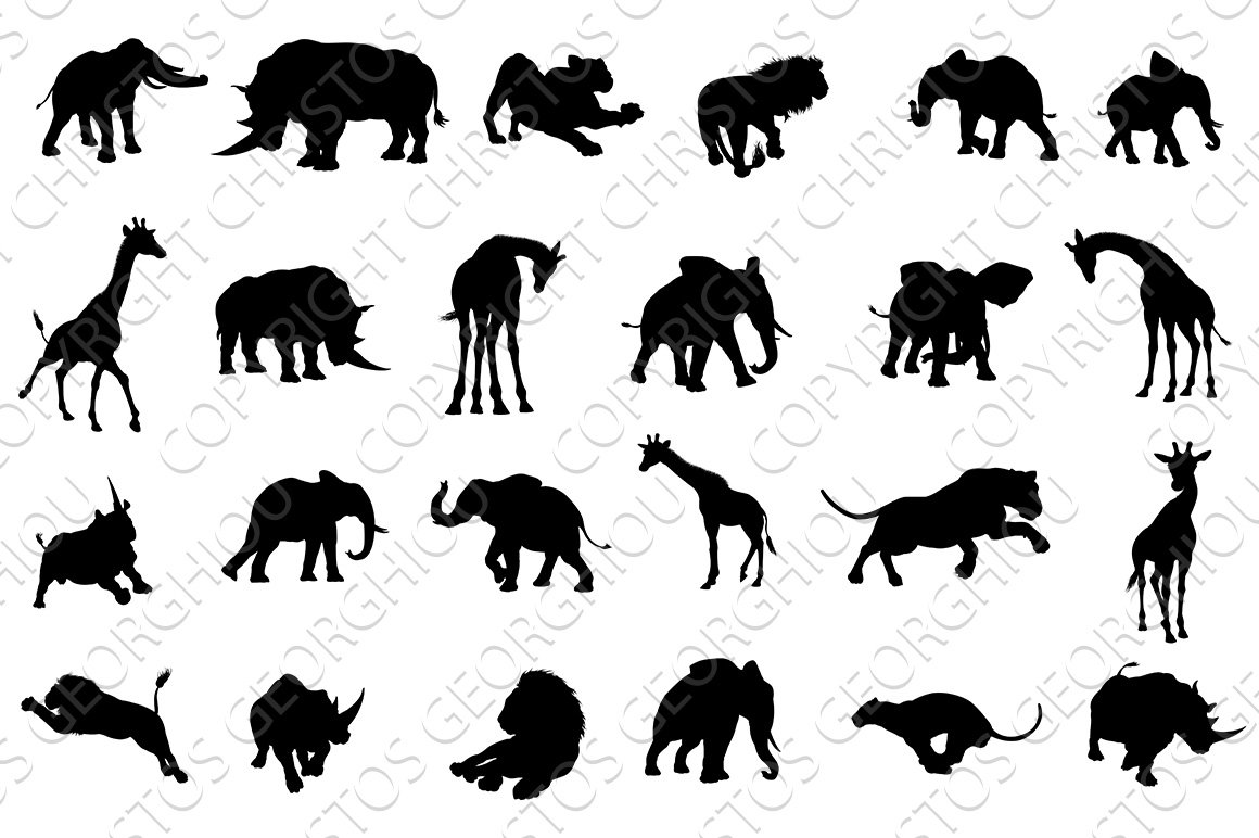 picture of safari animals cute and latest baby coloring pages picture animals safari of