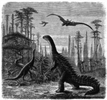 pictures of a stegosaurus 10 odd early interpretations of dinosaurs mental floss a stegosaurus of pictures