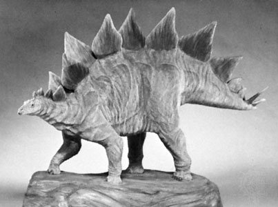 pictures of a stegosaurus art evolved life39s time capsule january 2013 a of pictures stegosaurus