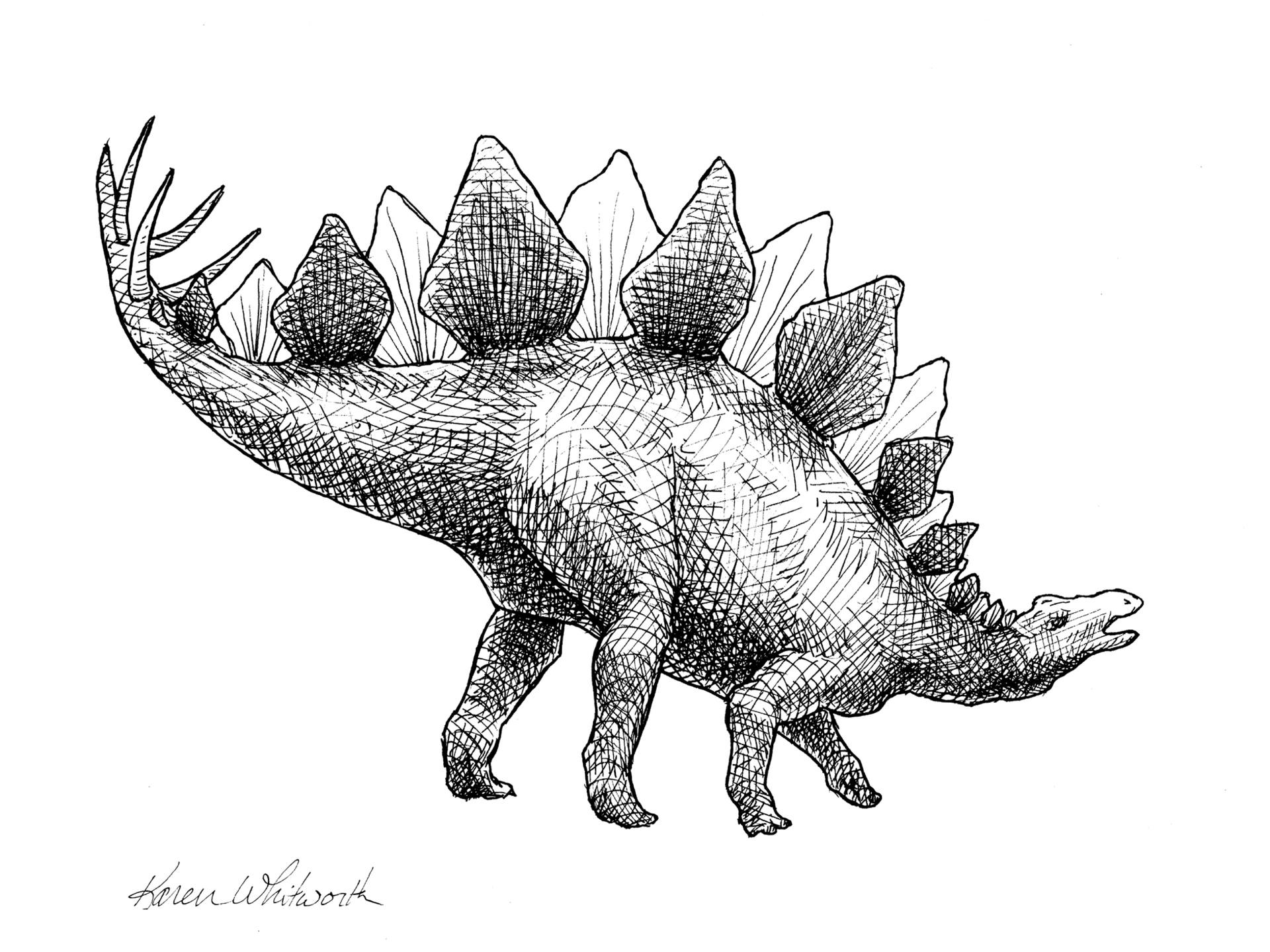 pictures of a stegosaurus new rebor model dinosaur scout series minizoo blog stegosaurus a of pictures