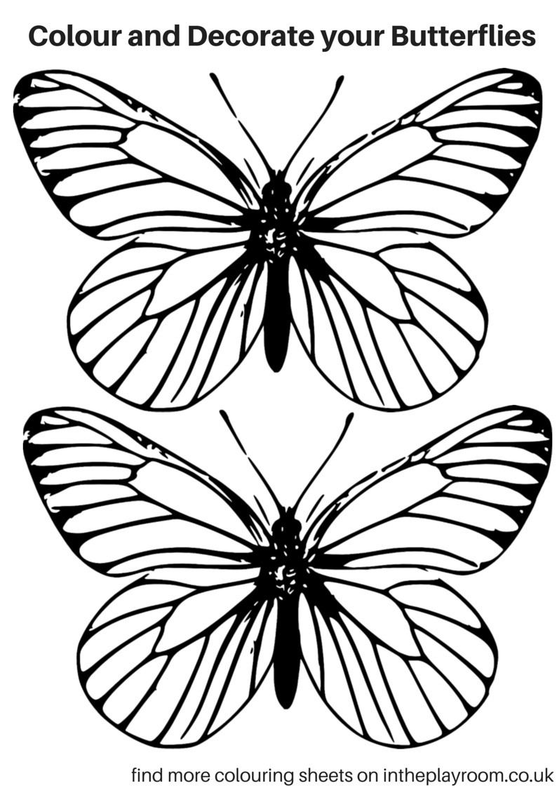 pictures of butterflies to color free printable butterfly colouring pages in the playroom color pictures of to butterflies