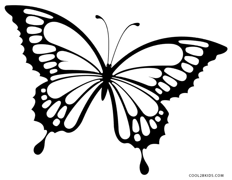 pictures of butterflies to color printable butterfly coloring pages for kids cool2bkids pictures butterflies color of to