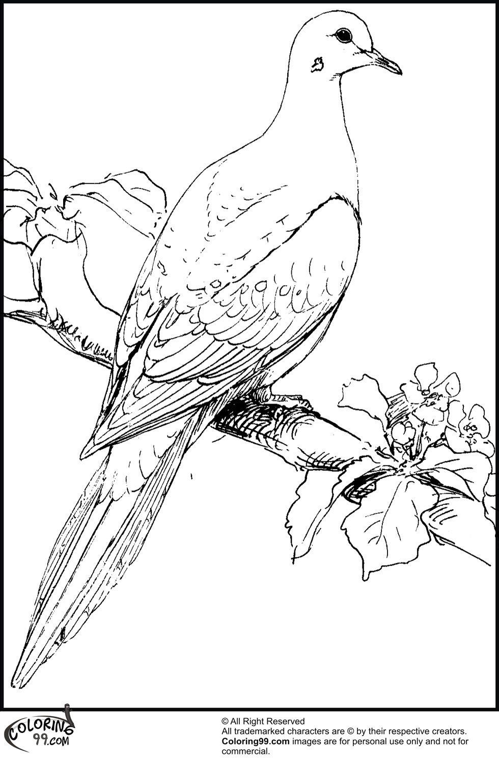 pictures of doves to color dove coloring page dove free printable coloring pages color pictures doves of to