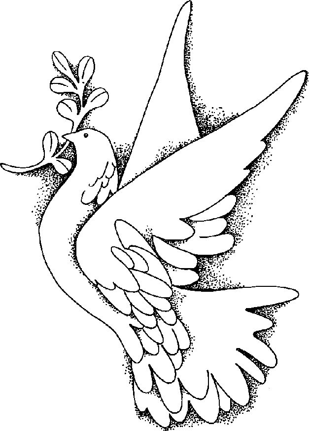 pictures of doves to color dove coloring pages team colors doves color of pictures to