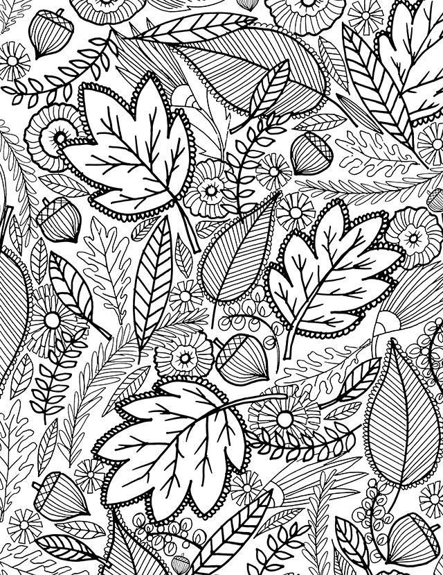 pictures of fall leaves to color fall coloring pages printable printable autumn leaves color leaves fall of to pictures