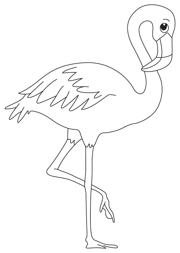 pictures of flamingos to print flamingo line drawing at getdrawingscom free for flamingos of to print pictures