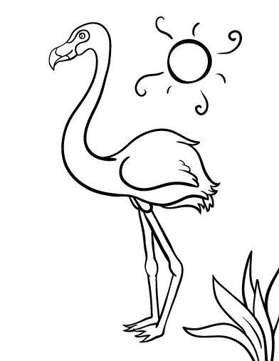 pictures of flamingos to print flamingos coloring pages to kids print flamingos pictures to of